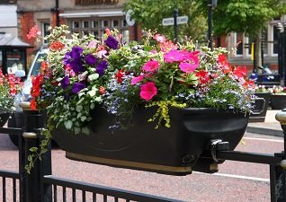 Flower display in a FullBloom Planter which has been rail mounted