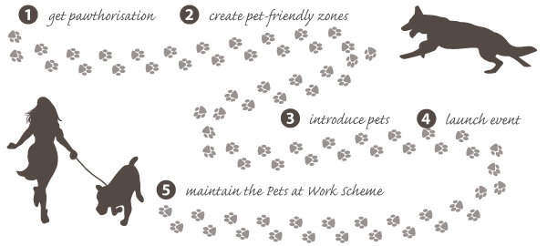 Pets at Work Scheme Step-by-step Process Guide