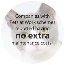 Pets at Work no maintenance costs